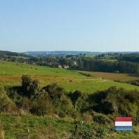 Limburg (NL)